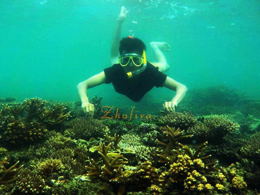 Pulau Lemukutan, Wisata bawah laut eksotis kalimantan barat